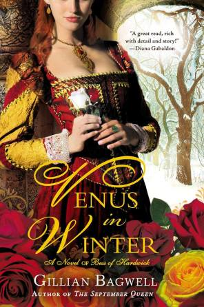 Venus in Winter cover