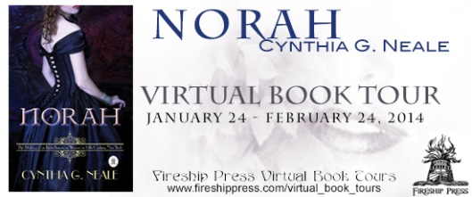 Norah Tour Graphic